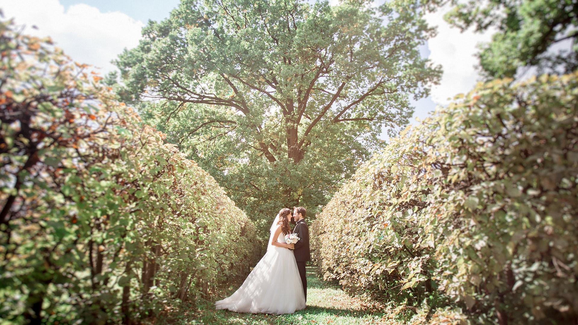 Фотограф на свадьбу файн арт